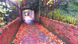 Fall colours in the passageway through the Jephson Gardens in Leamington Spa.