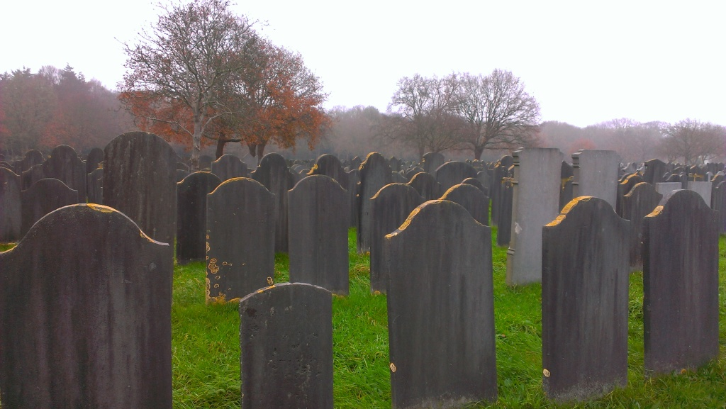 The view from Simon van Norden's grave: looking the other way.